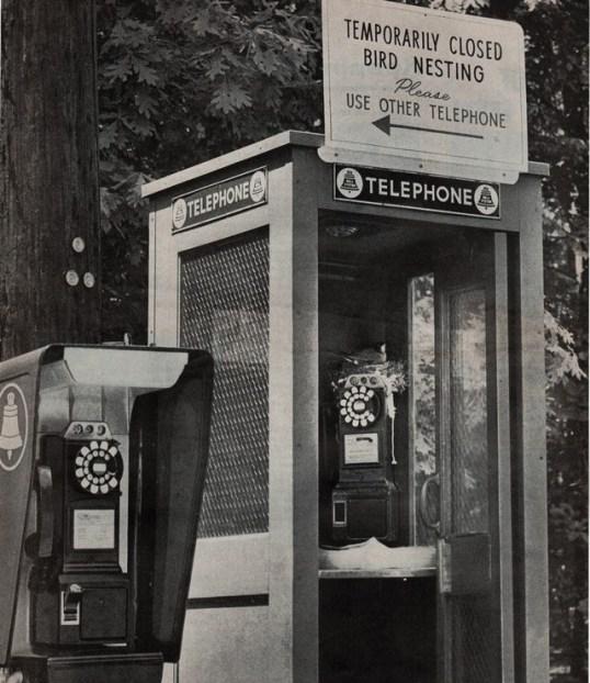 1961_PB
