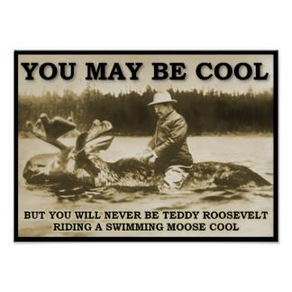 teddy_on_a_moose_funny_poster-r6cd8f1c17f4648988c0afffe9c7f3c80_xdcdz_8byvr_324