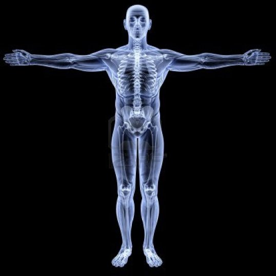 10857063-male-body-under-x-rays-isolated-on-black