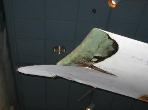 Damaged wing tip