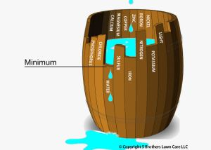 Liebig's barrel explains the Law of Minimum